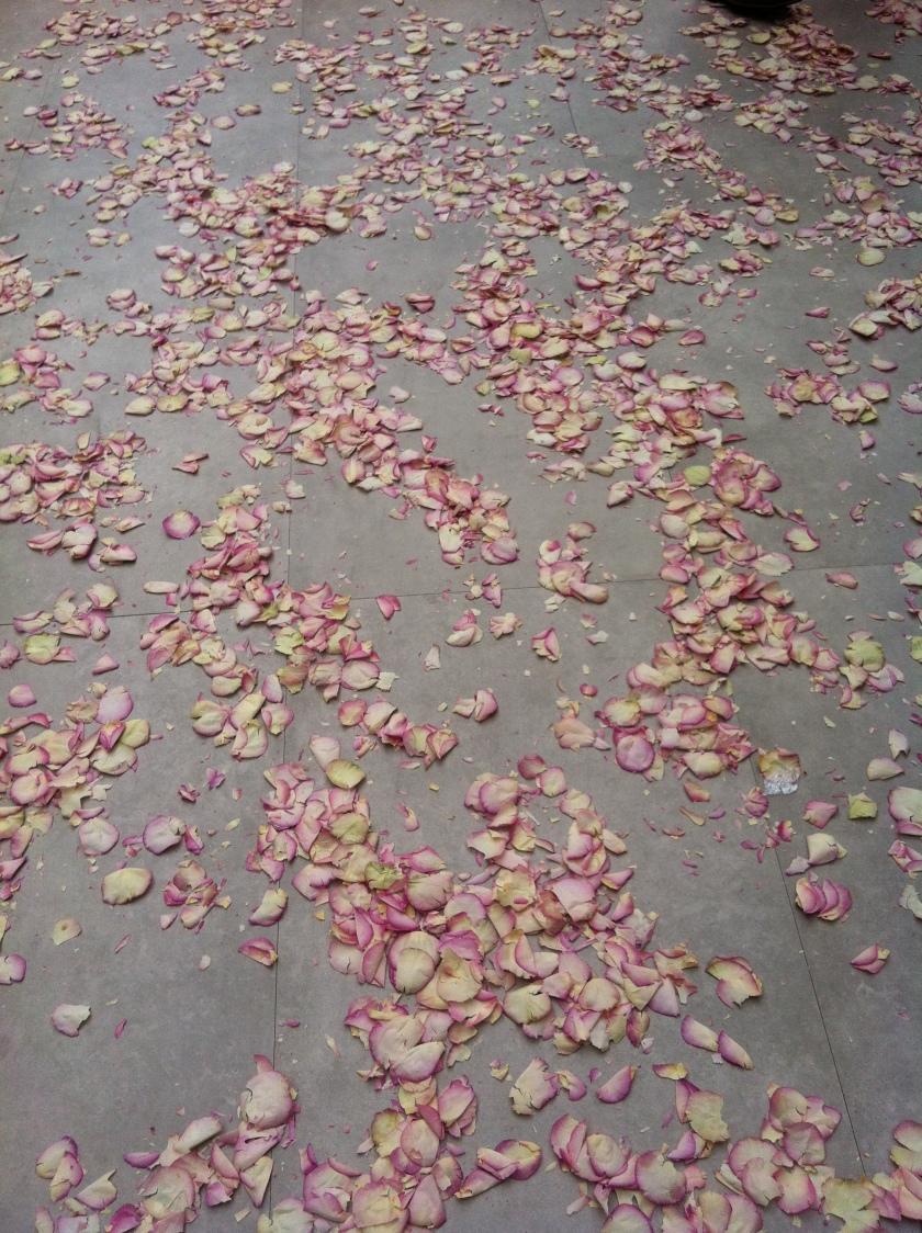 Rose petals after the show