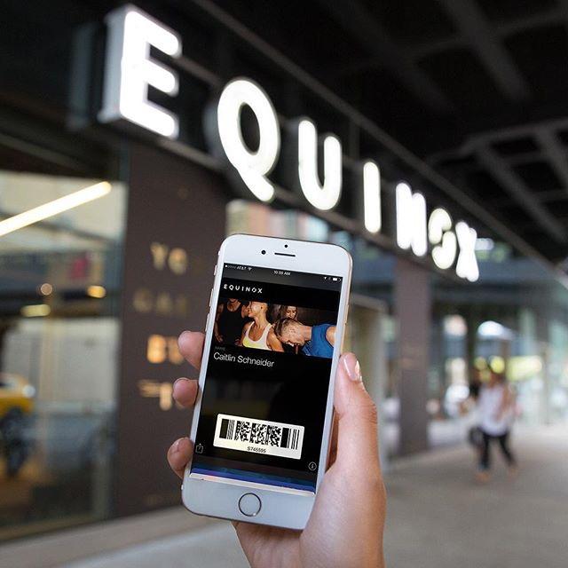 Equinox_Equinox_hr