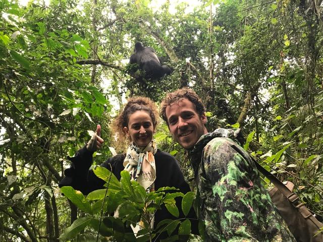 Gorilas Trekking at Bwindi National Park